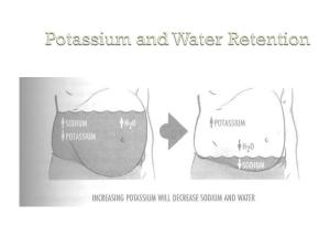 sodium potassium